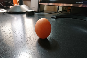 生卵ワーク